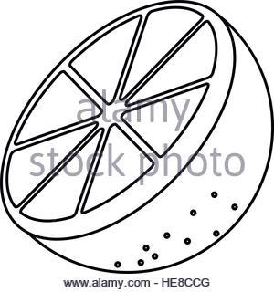 300x320 Drawing Sliced Orange Juicy Stock Vector Art Amp Illustration