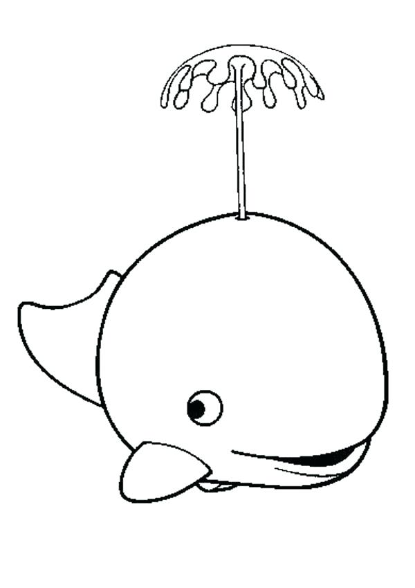 600x849 Killer Whale Coloring Page Line Drawing Of Killer Whale With Calf