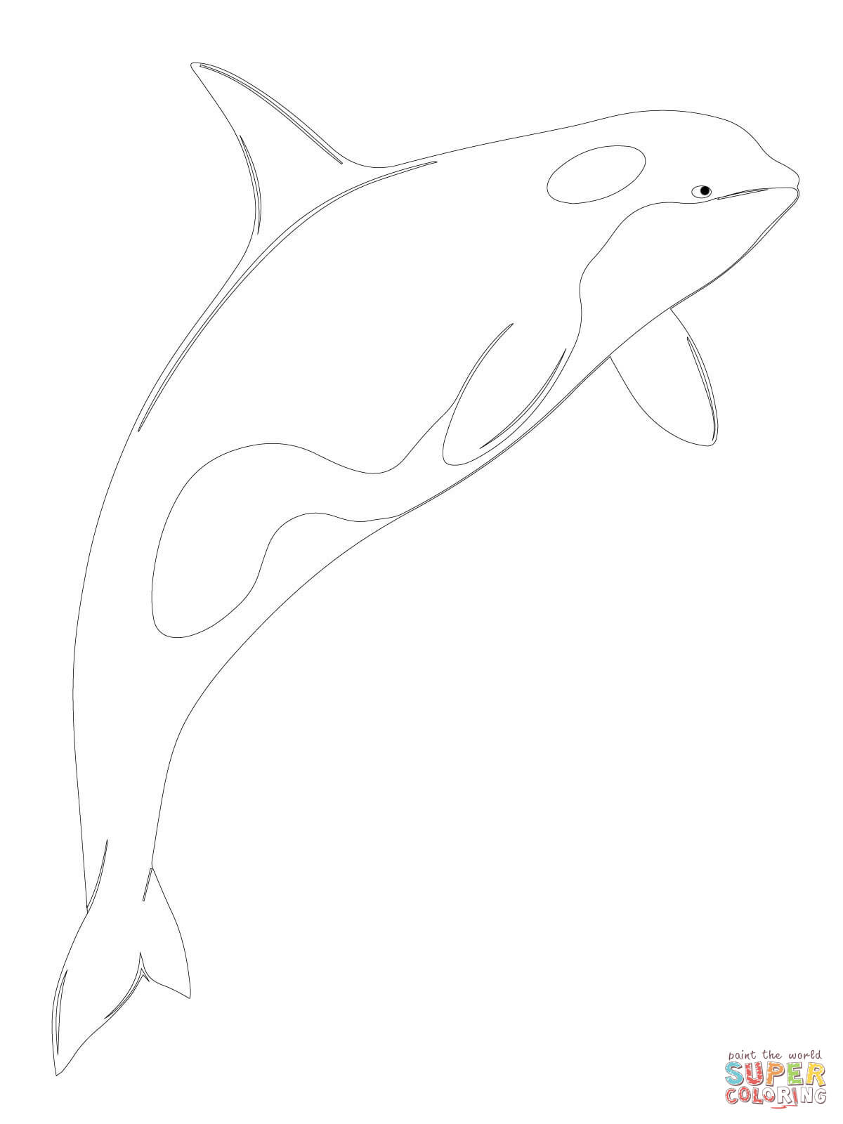 1200x1600 Orca Whale Shamu Coloring Page Free Printable Coloring Pages