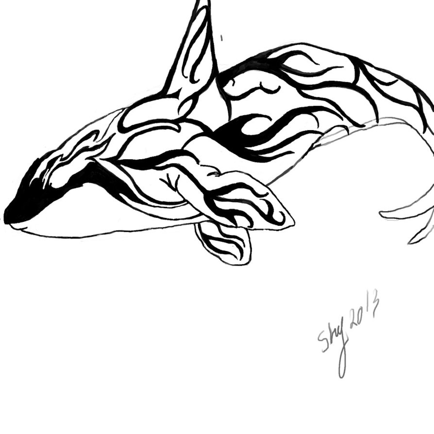 894x894 Tribal Orca By Shycelt
