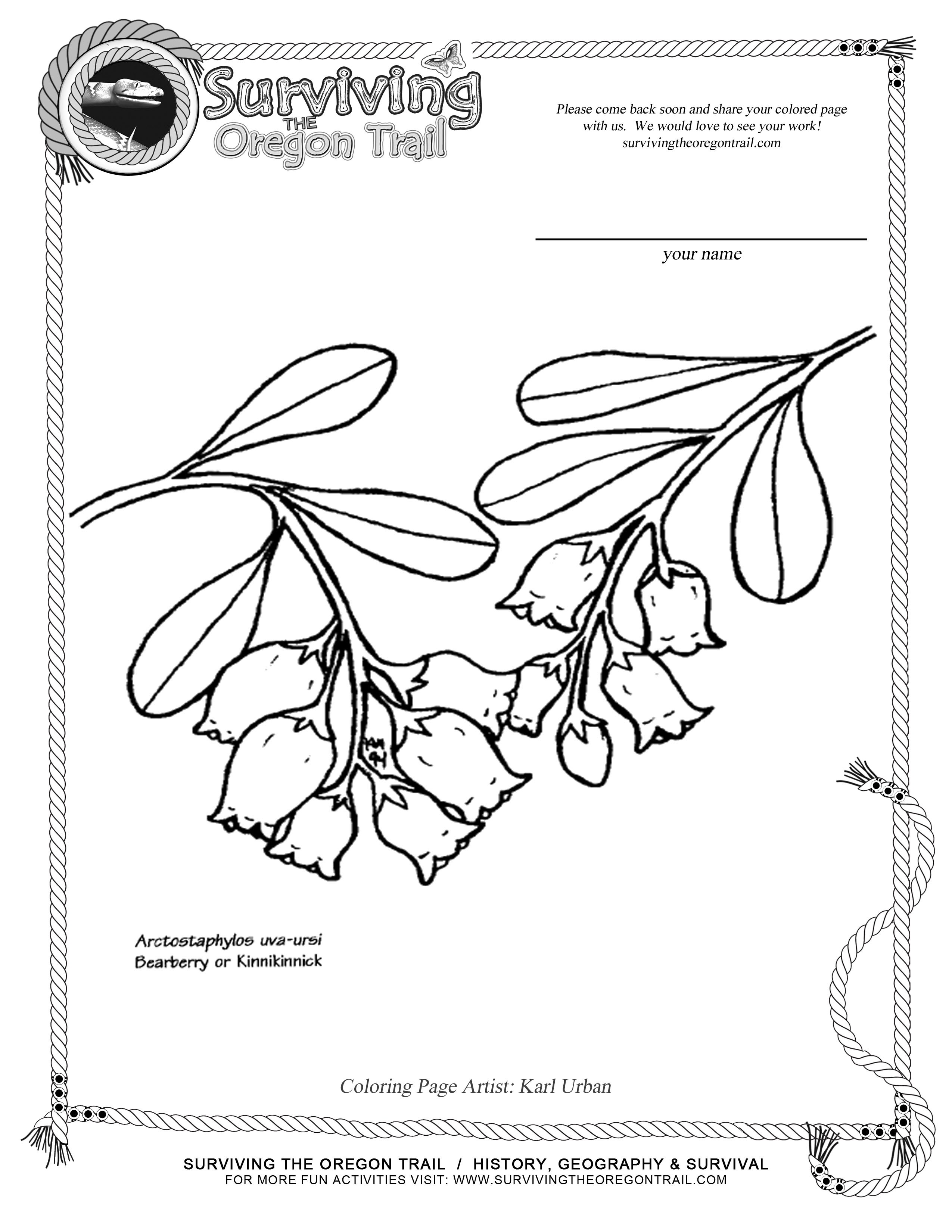 coloring pages oregon trail | Oregon Drawing at GetDrawings.com | Free for personal use ...