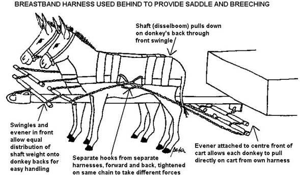 589x356 Horse Drawn Wagon Parts Diagram The Wagon