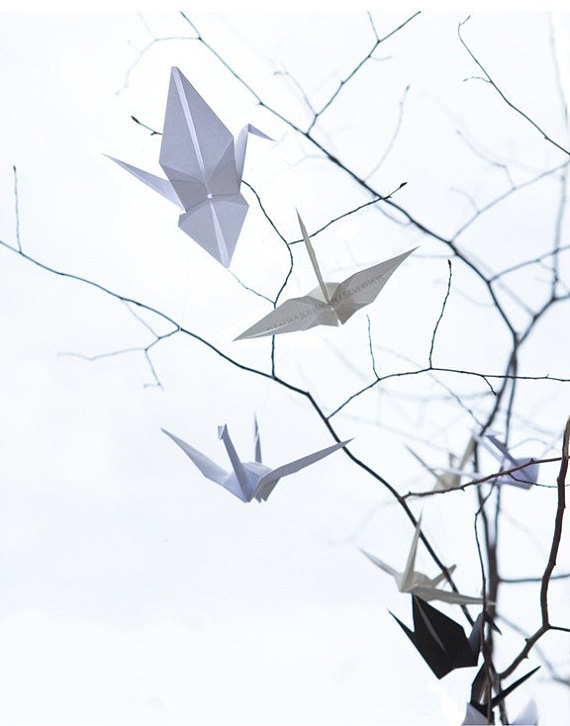 570x726 Origami Crane Peace Sky Branches Tree Fine Art Photo