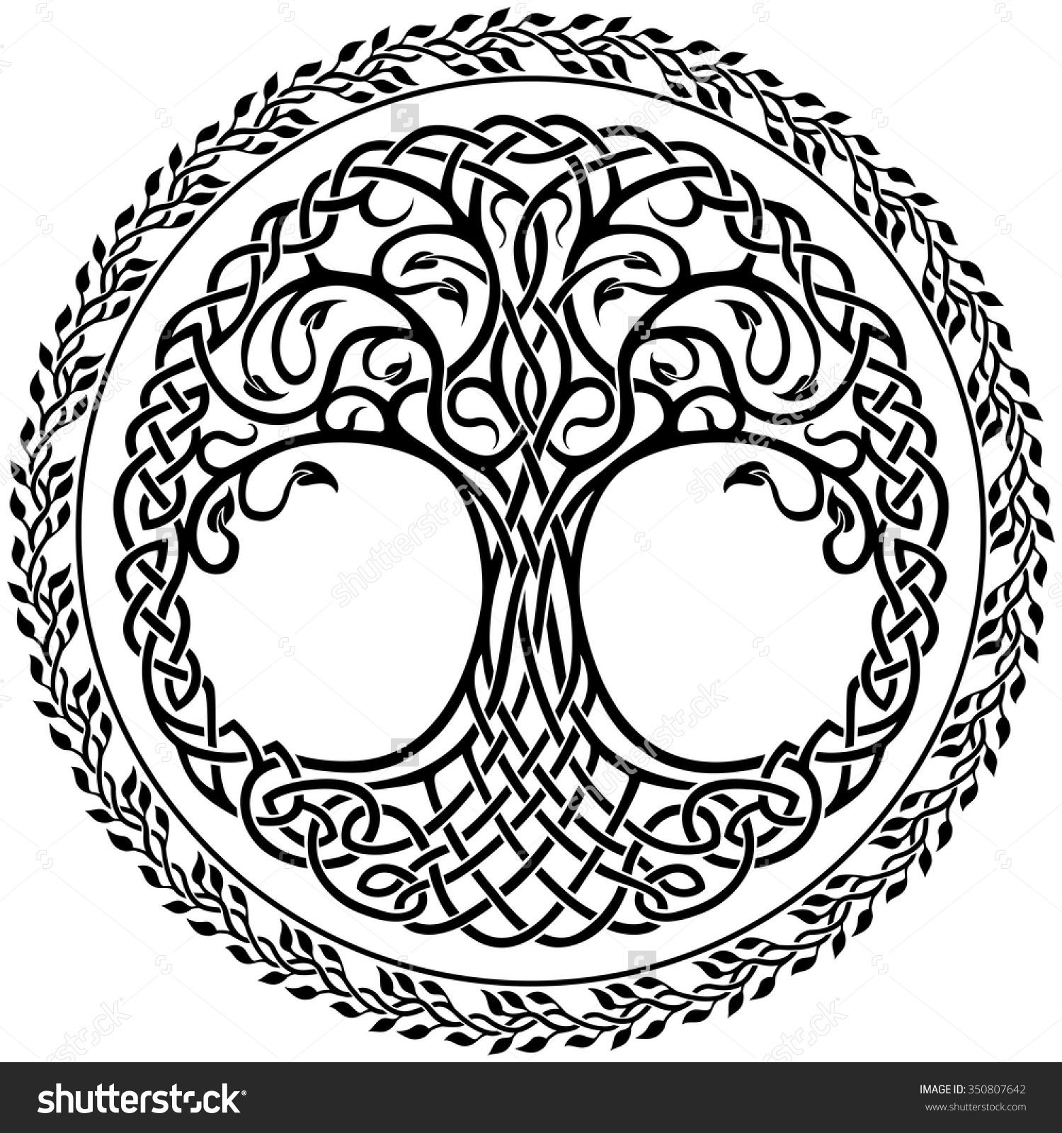 1500x1600 Celtic Tree Of Life Drawing Vector Ornament, Decorative Celtic