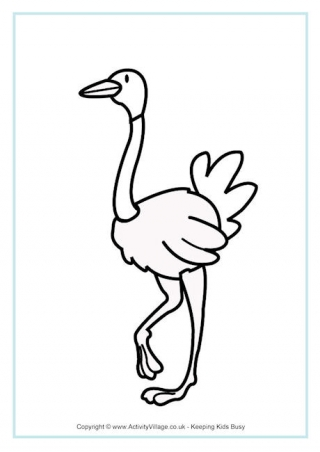 320x452 Ostrich Activities For Kids