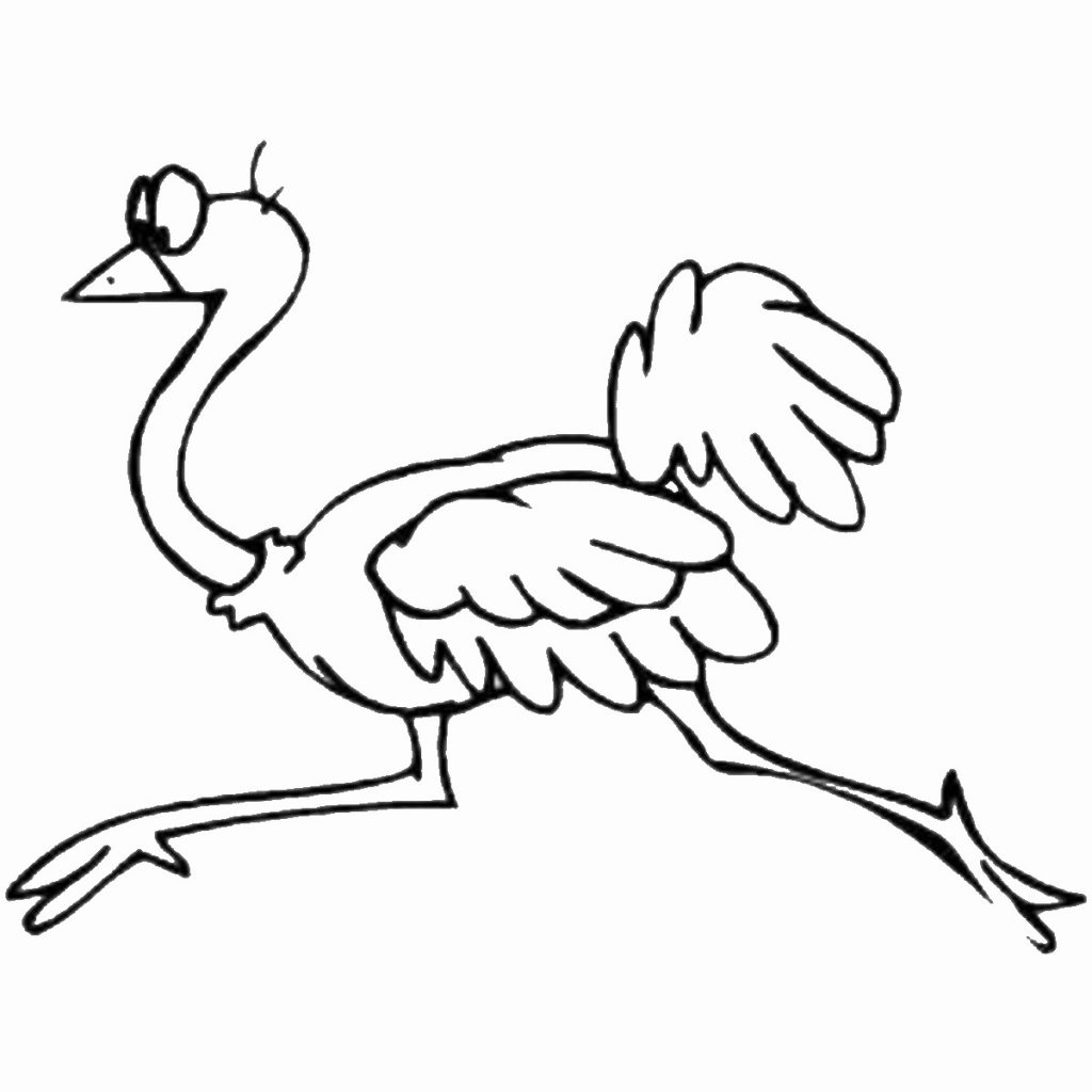 1024x1024 Free Animals Ostrich Printable Coloring Pages For Preschool