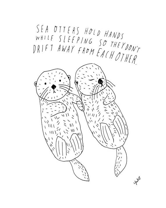570x713 Sea Otter Sticker Sea Otter Drawing Sea Otter Holding Hands