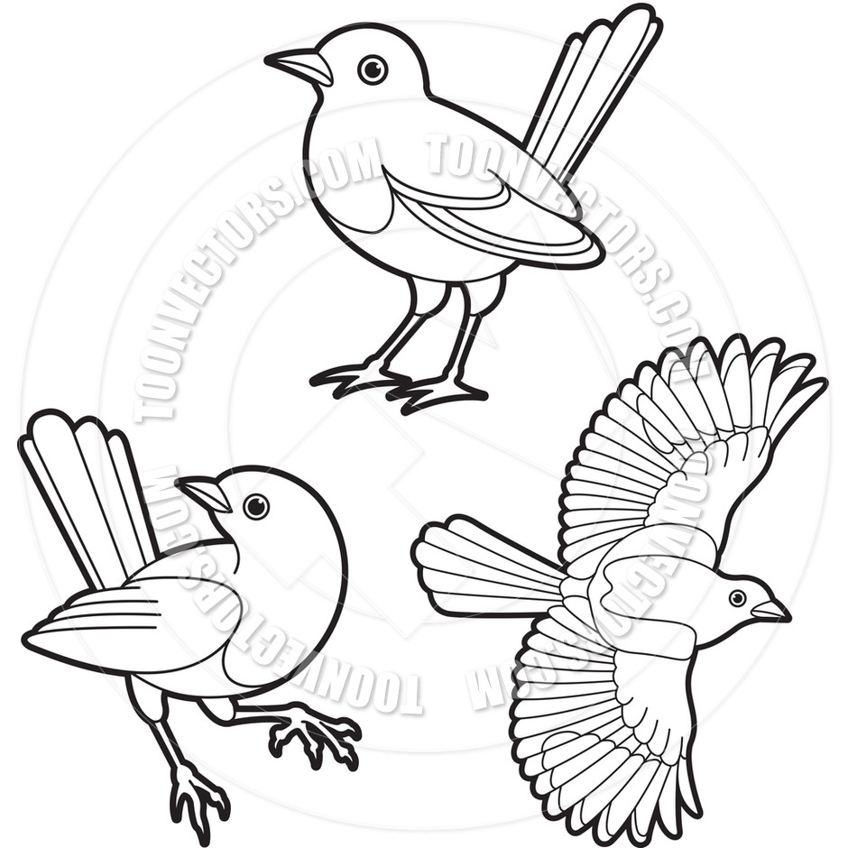 940x940 Bird Outline Drawing