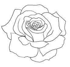 230x219 Gallery Simple Rose Drawing Outline,