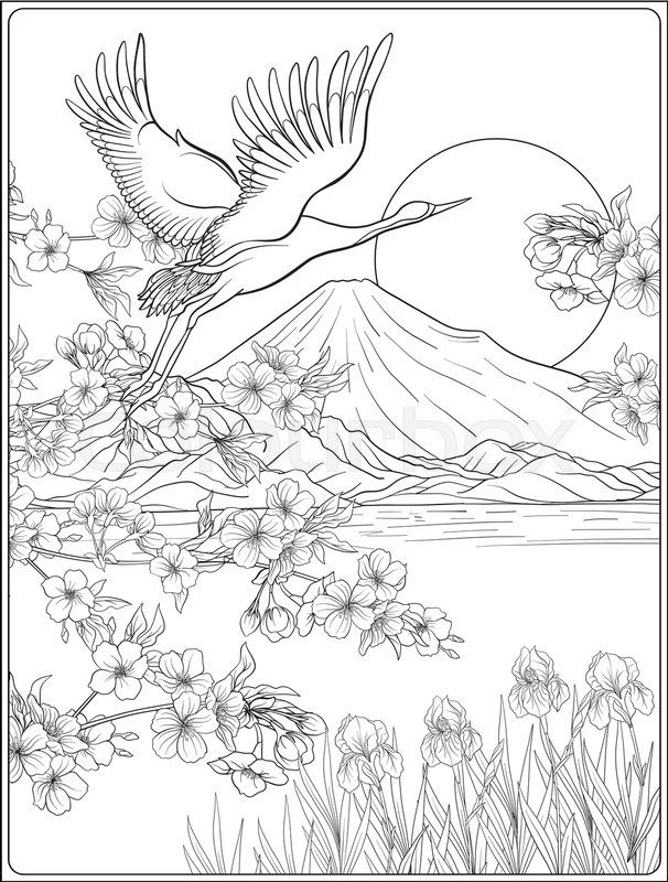 606x800 The Best Bird Outline Ideas On Bird Patterns, Bird