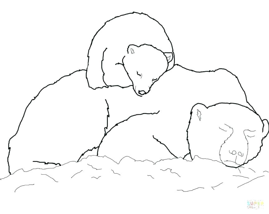 863x685 Polar Bear Coloring Pictures Drawn Polar Bear Color 3 Baby Polar
