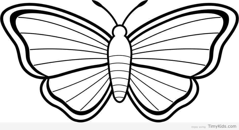 940x511 20 butterfly outline coloring pages timykids
