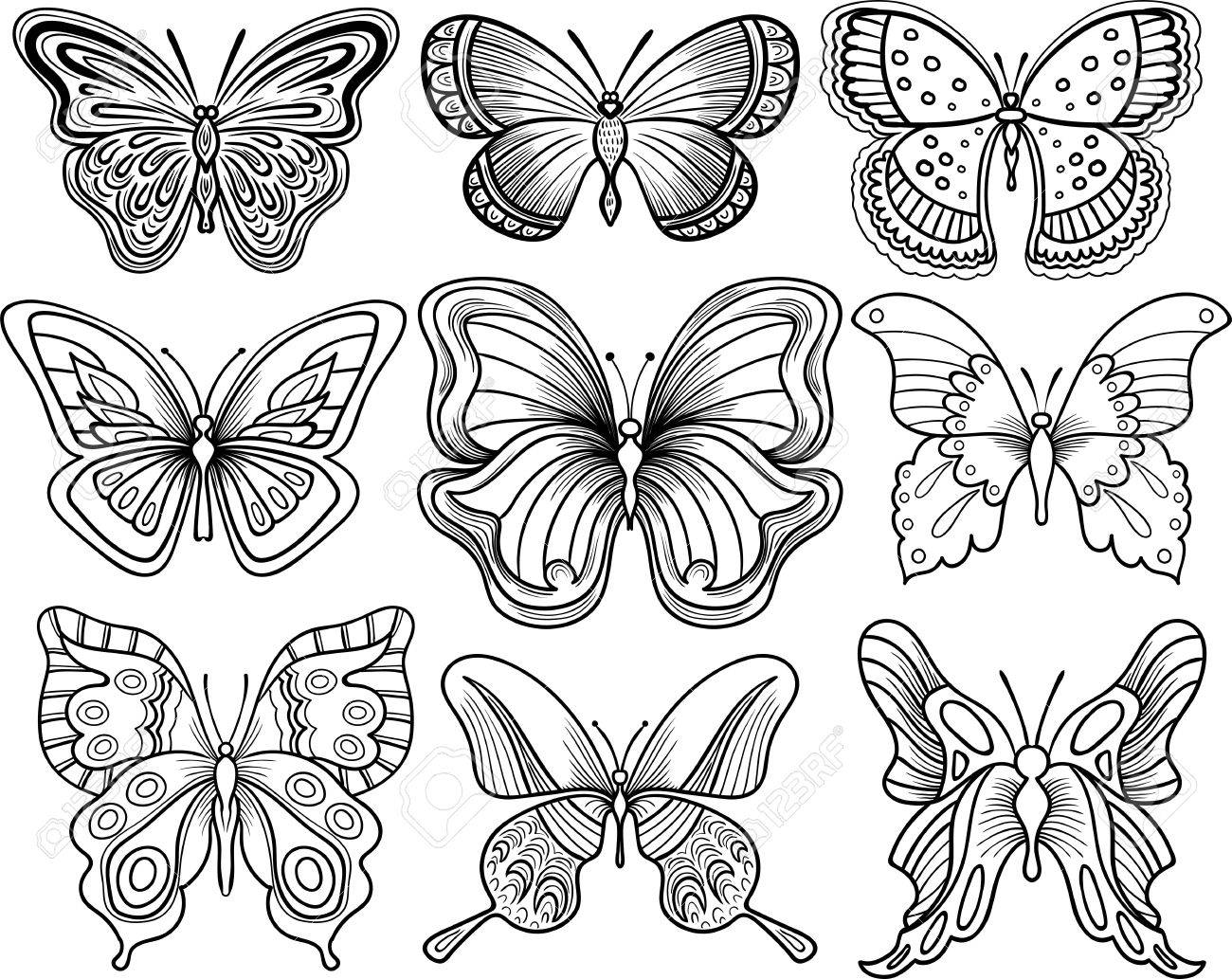 outline drawing of a butterfly at getdrawingscom free