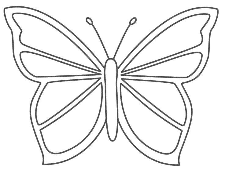736x557 plush design ideas butterfly outline butterflies and on gclipart
