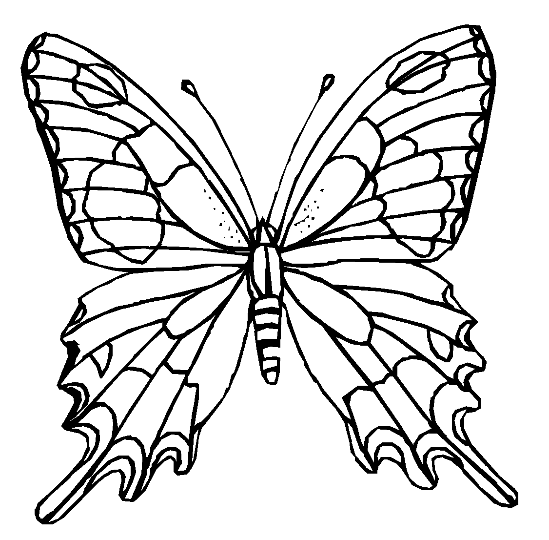 1126x1106 Colours Drawing Wallpaper Butterfly Cartoone Colour Drawing Hd