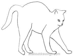 288x223 Easy Cat Drawings