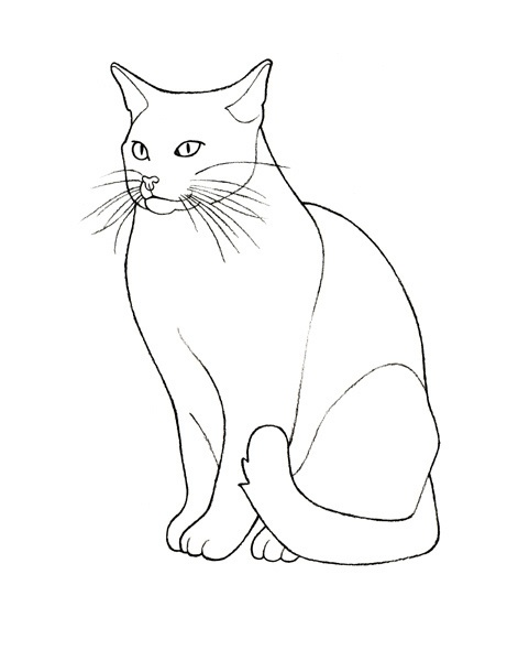 461x600 Cat Graphic Outline
