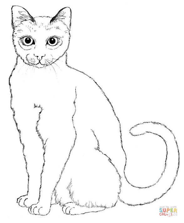 588x713 Cats Coloring Pages Free Coloring Pages