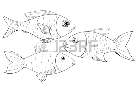 450x300 Fish. Outline Drawings Royalty Free Cliparts, Vectors, And Stock