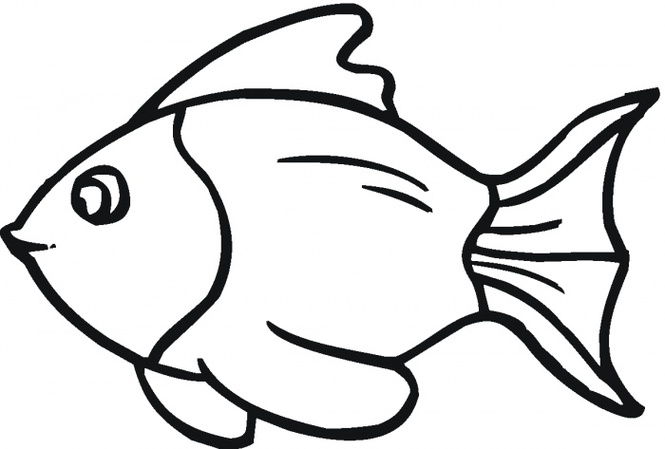 665x449 Outline Of Fish