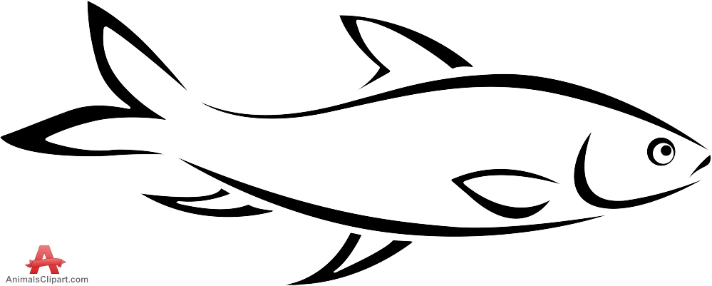 999x401 outline of fish fish outline clipart 2 wikiclipart free