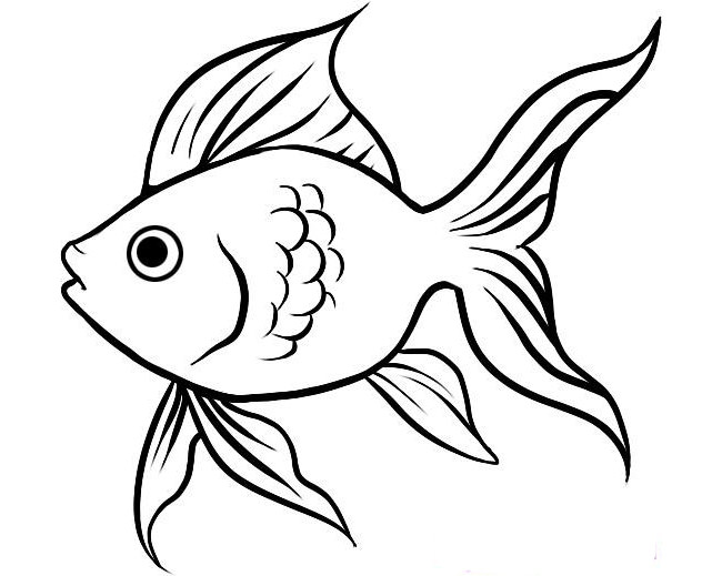 650x519 Outline Of Fish Fish Template 50 Free Printable Pdf Documents