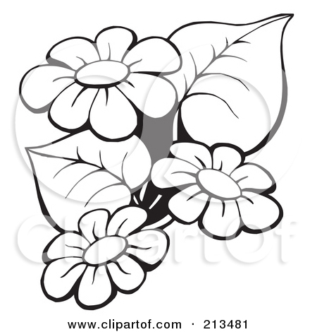 Outline drawing flowers 450x470 free printable black art royalty free rf clipart illustration