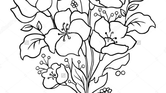 570x320 Outline Of Flowers For Drawing Flower Drawing Outline