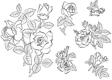 452x326 Outline Drawing Flowers Free Vector Download (99,038 Free Vector