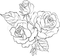 236x219 Simple Rose Outline Drawing