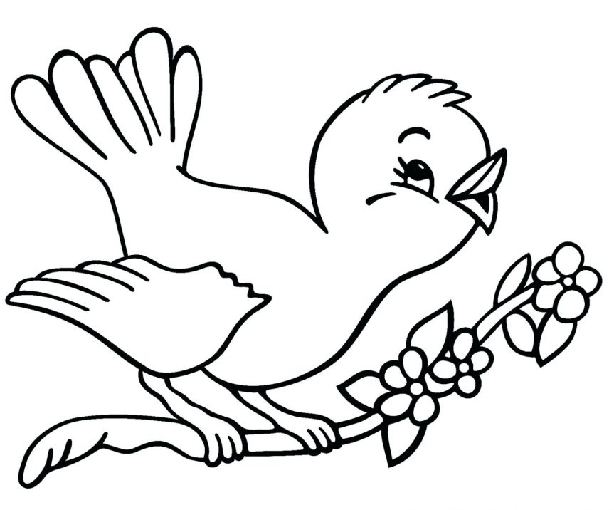 863x716 Bird Outline Outlines Birds Pictures Drawing Flying Outlines