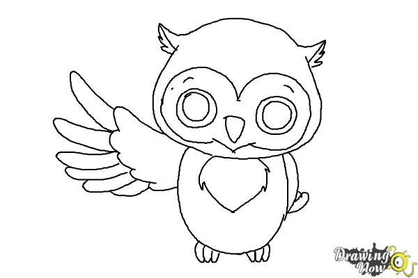 cartoon owls to draw