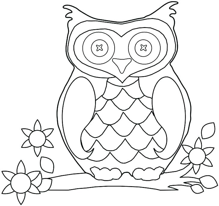 728x684 Cute Owl Coloring Page