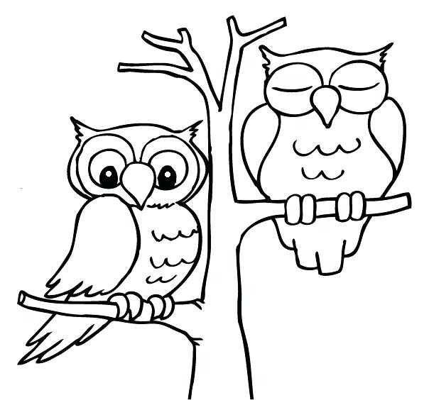 604x564 Coloring Pages Draw An Owl A Cartoon Drawing Of 2 Owls Sitting