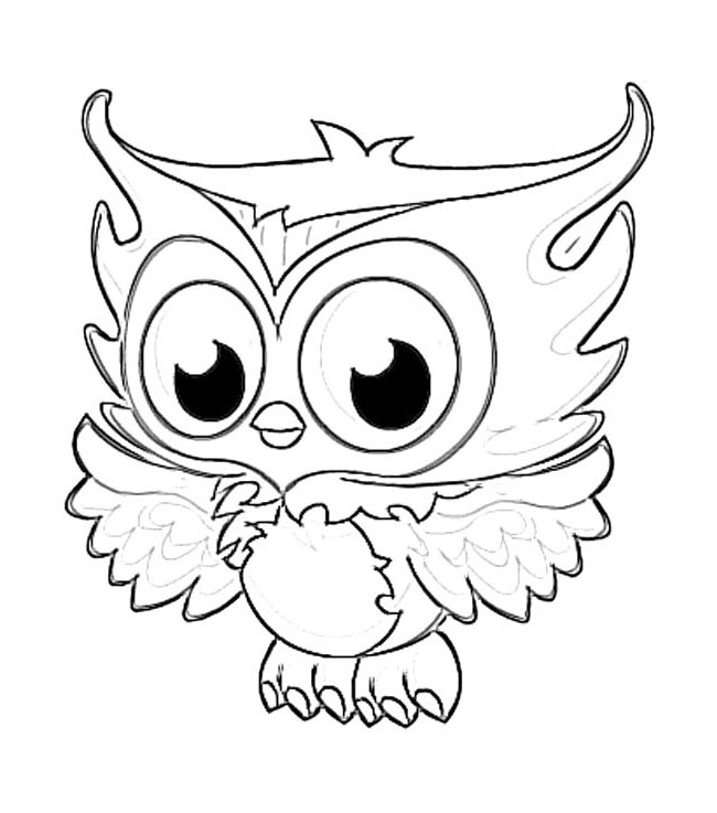 Owl Color Drawing at GetDrawings.com | Free for personal use Owl ...