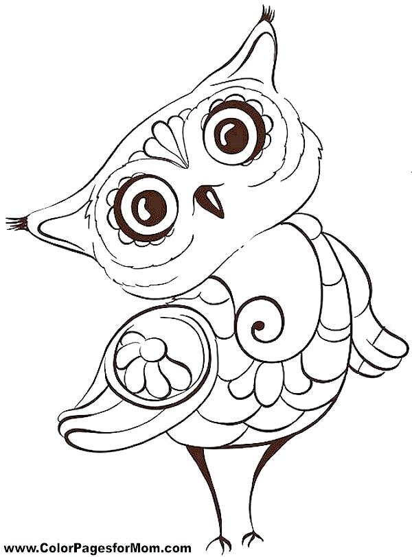 600x812 Delightful Cute Owl Coloring Pages Print Baby Page Drawing Clip