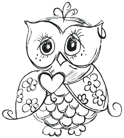 Owl Cute Drawing At Getdrawings Com Free For Personal Use Owl Cute
