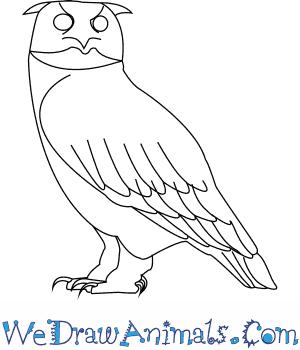 300x350 How to Draw a Eurasian Eagle Owl