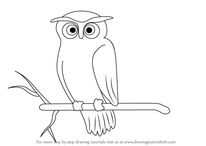 800x566 Learn How to Draw a Scary Owl (Halloween) Step by Step Drawing