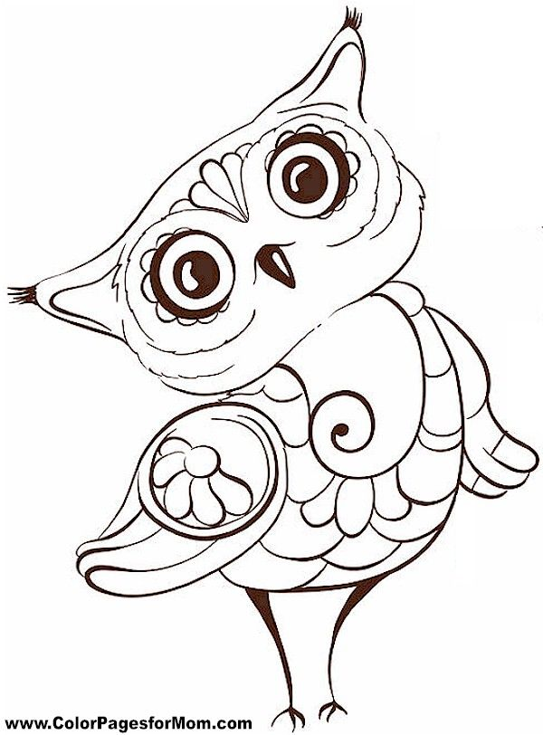 600x812 Owl Coloring Page 5 … Pinteres…
