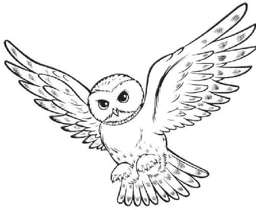 500x411 Snowy Owl Hedwig Deep Space Sparkle