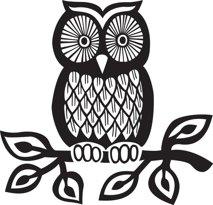 Owl Drawing Black And White at GetDrawings | Free download