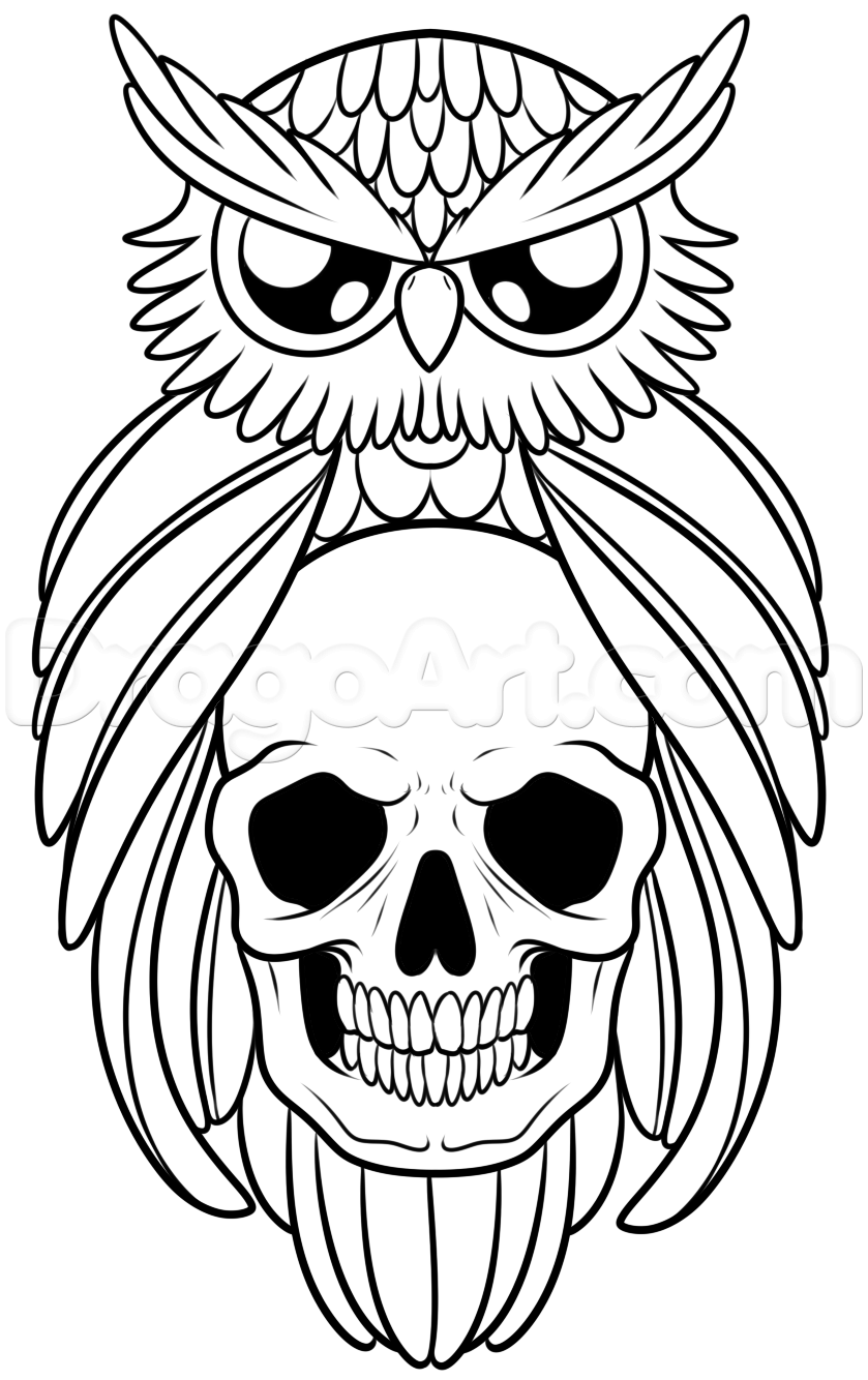 839x1334 How To Draw An Owl And Skull Tattoo, Step By Step, Tattoos, Pop