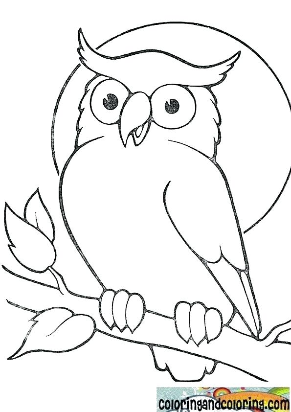 595x842 Coloring Pages Draw An Owl Trendy Ideas Coloring Pages Draw An Owl