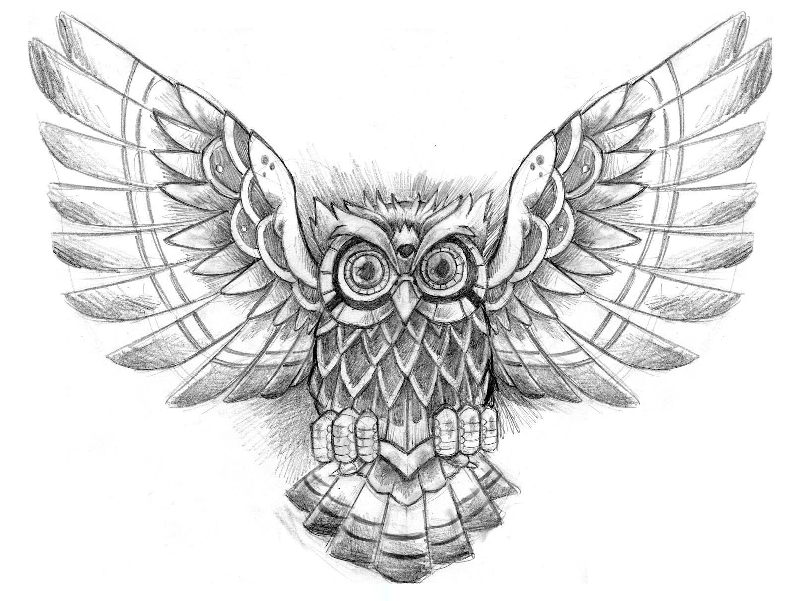 1600x1210 Owl Drawings