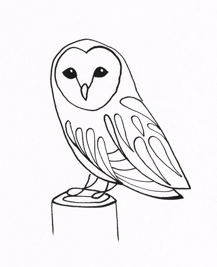 750x926 Line Drawings Of Owls Simple Owl Drawing Bentheillustrator Barn