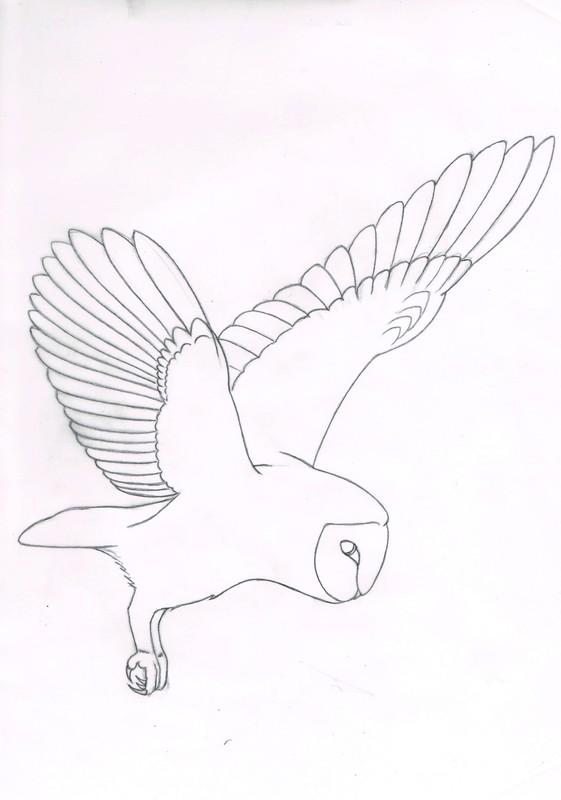 Owl Drawing Simple at GetDrawings | Free download