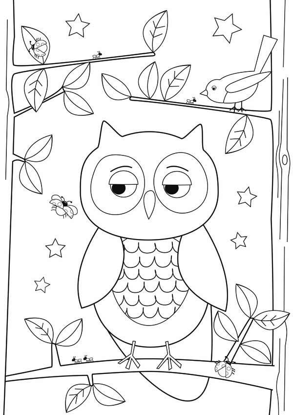 600x849 Owl, Simple Owl Drawing For Kids.jpg Paper Art