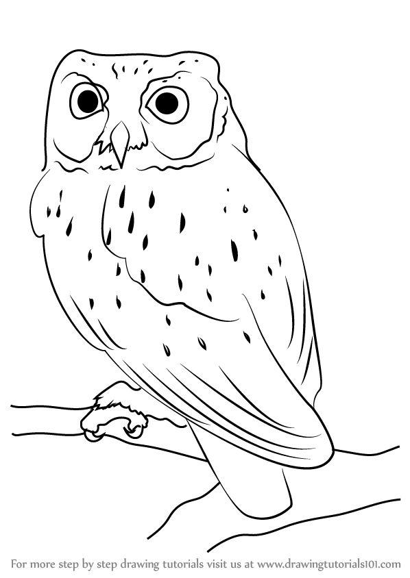 Owl Drawing Step By Step at GetDrawings | Free download