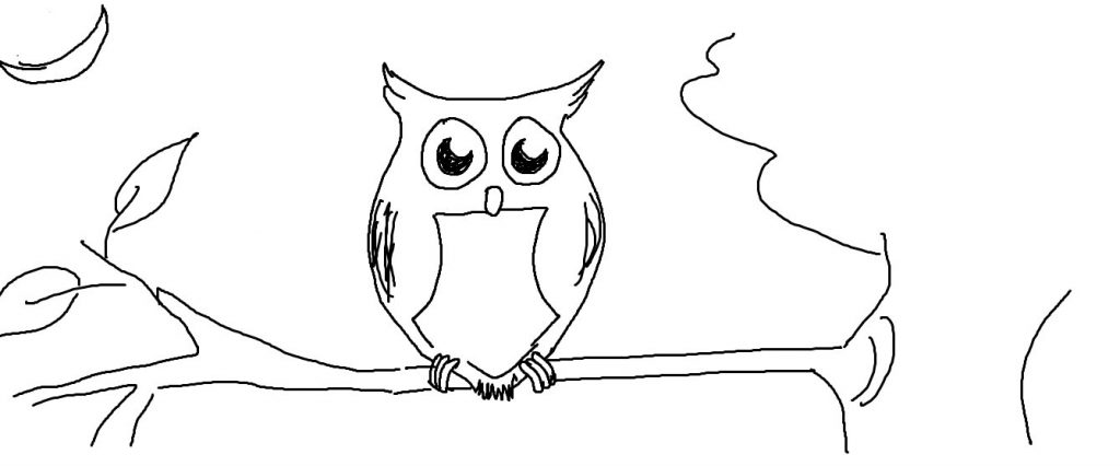 1024x426 How To Draw An Owl Step By Step Easy Simple Cartoon Drawings